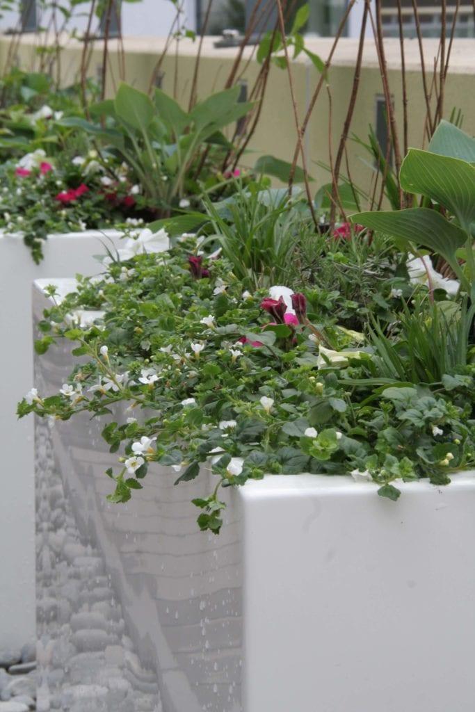 Plantenbakken op dakterras