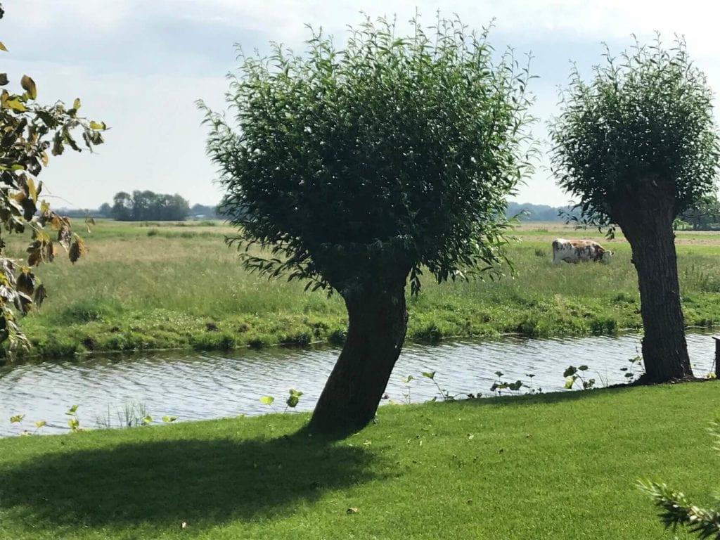 Uitzicht op de polder